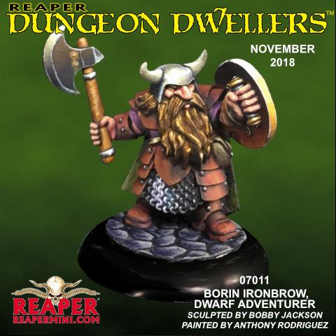 7011 Borin Ironbrow, Male Dwarf Adventurer
