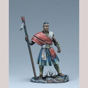 DSM7488 Male Warrior Monk