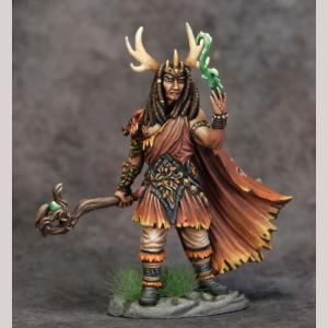 DSM7497 Male Druid with Staff