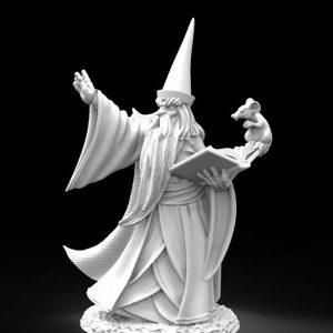 30002 Darius the Wizard