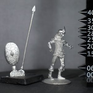 TMM8002 Wood Elf Spearman in Chainmail
