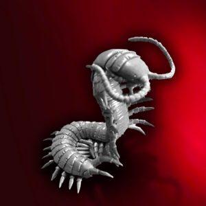 WFMO6 Giant Centipede