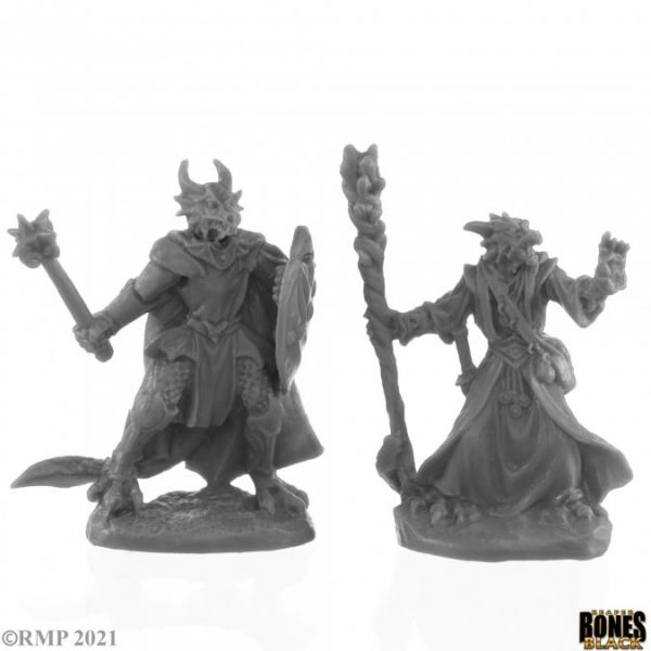 44144 Dragonfolk Wizard and Cleric (2)