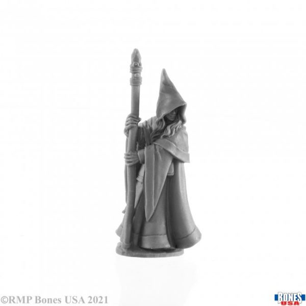 30027 Anirion, Elf Wizard
